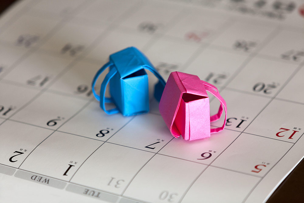 How to Figure Out School Holiday and Term Dates