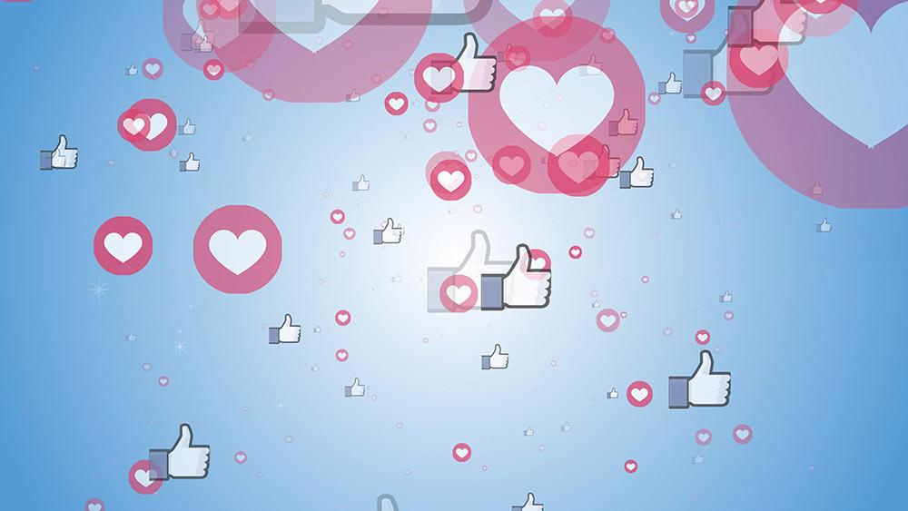 social media net worth
